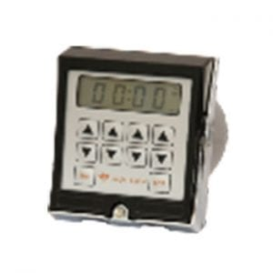 Timer Eagle Signal CX100 Repeat Cycle Timer